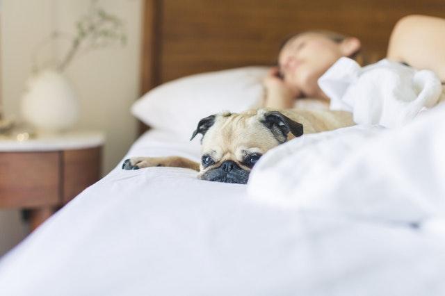 examen Correos sueño